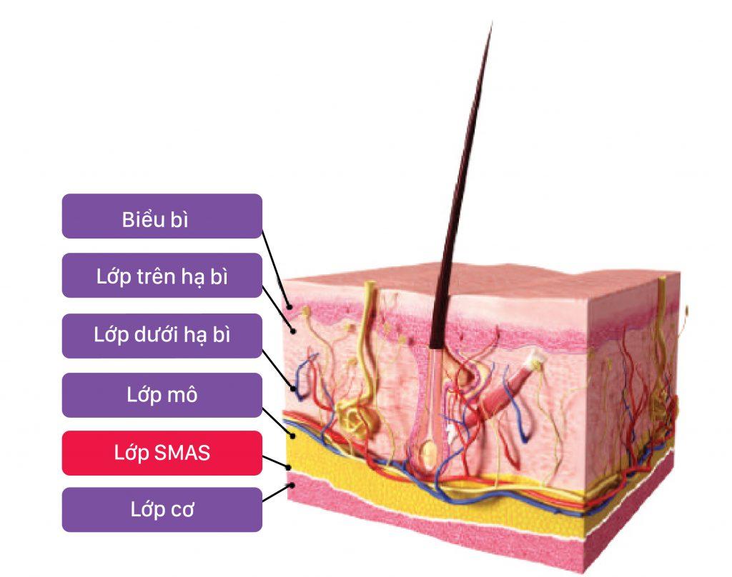 nâng cơ trẻ hóa da